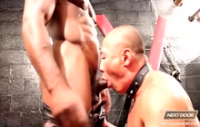 Submissive Asian Rob Lee fucked by Race Cooper